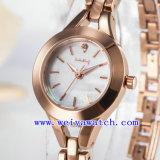 Regarder la promotion de vente chaude Mesdames Watch (WY-041D)