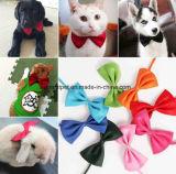 Le collier du faisceau de chien petit animal de compagnie Tie chien chat produit élégant noeud de cravate Teddy Cat le filtre Bow Tie