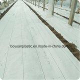 PE blanca tejida cubierta de tierra de control de malezas Mat para invernadero