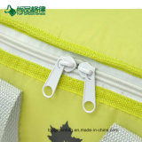 El tipo aislado durable portable promocional fresco lleva un bolso más fresco