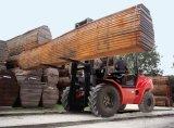 2.0-3.5 Tonnen-raues Gelände-Gabelstapler mit Yanmar Motor