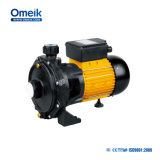 Scm-22 관개를 위한 원심 수도 펌프