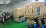 250W Fiets van de Prijs van de fabriek Best-Selling Goedkope Vouwende Elektrische