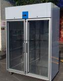 Congelatore verticale di vetro del ristorante dell'acciaio inossidabile del portello con Embraco Comperssor