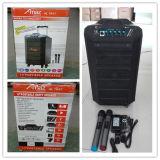 Amaz Bluetooth 또는 무선 Mic 또는 Portable의 최신 판매 트롤리 스피커 12 인치