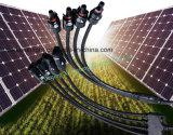 Système d'énergie solaire à chaud 14/12/10AWG Y de la Direction générale PV MC4 du connecteur de câble (1 paire, M/FFFF et F/MMMM)