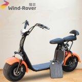 Schwanzloser Motorrad-fetter Gummireifen-elektrisches Motorrad des Wind-Vagabund-1000W