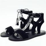 새로운 디자인 Shoes 편평한 샌들 숙녀