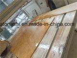 Naturale/ha lucidato il marmo giallo della Cina per il rivestimento parete/del pavimento