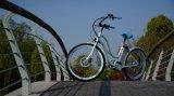 La pédale a aidé la bicyclette électrique de croiseur d'hommes fabriquée en Chine