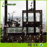 1.5W 40 LED Weihnachtsbaum-feenhafte Lichter wärmen weißes Zeichenkette-Licht der USB-2900K Unterseiten-16FT/5m LED für Dekoration-Licht-Hochzeitsfest