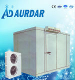 Equipamento de refrigeração sala fria para a carne e peixe