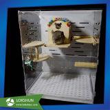 La gabbia acrilica libera della Camera del gatto dell'animale domestico inscatola all'ingrosso