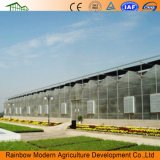 Progetto agricolo della serra della scheda di PC