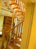 Escalier spiralé en bois fait sur commande d'acier inoxydable fait à Foshan