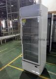 Singolo frigorifero di vetro commerciale dritto del dispositivo di raffreddamento del portello con illuminazione del LED