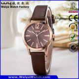 Relojes de señoras ocasionales del OEM del reloj de la correa de cuero del asunto (WY-114E)