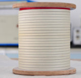 Il documento isolato di Nomex ha coperto il collegare di alluminio del magnete