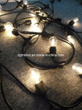 Lampadina leggiadramente della stringa della lampada della lampadina di colore LED per l'indicatore luminoso decorativo di natale del gardem