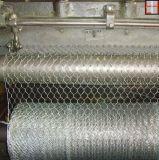 電流を通された六角形の鶏の金属線の網