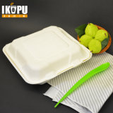 100% Biodegradável Pulp Food Container Paper Plate Eco Friendly