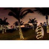 太陽クリスマスの照明、太陽ロープライト、太陽豆電球