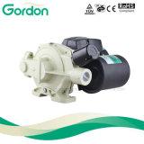 Laden inländische intelligente selbstansaugende Pumpen des Wasser-PS131 für System auf
