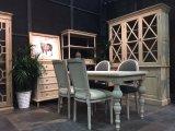 Module économique et de Practica pour des meubles de salon