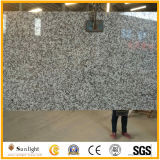中国カスタムG439の大きい花の白い花こう岩の台所島のカウンタートップ