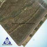 Belle plaque de nid d'abeilles de pierre de configuration pour le revêtement de mur intérieur
