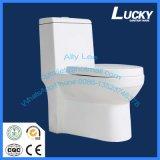 13# suelo - mercancías sanitarias montadas del cuarto de baño de una sola pieza con Saso/Ce