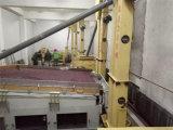 大豆のシードのクリーニングラインおよび白い腎臓豆の加工ラインおよびMungのシードのクリーニングライン