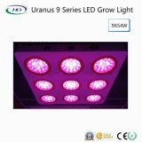 Uranus 9 LED는 Hydroponi&simg를 위해 가볍게 증가한다; 시스템 성장