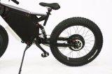 고품질 리튬 건전지 뚱뚱한 타이어 전기 자전거 3000W