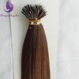倍によって引かれるブラウンカラーNanoリングの毛の拡張(NR12)