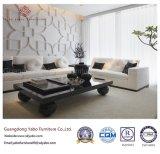 Los muebles del ocio fijaron con el sofá seccional para el pasillo del hotel (HL-T-5)