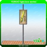 Lâmpada solar ao ar livre Pólo Lightbox do sinal de estrada