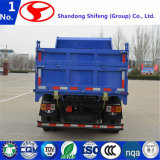 중국 덤프 트럭 LED 경트럭