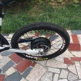 26インチの合金フレームによって隠される電池の電気バイク