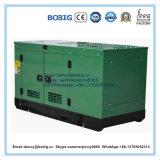 Diesel de 40 kVA con Ricardo motor generador de dosel