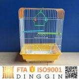 Neuer kleiner Vogel-Rahmen-Maschendraht
