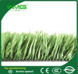 Het milieu Kunstmatige Gras van de Tennisbaan