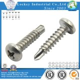 Vis en acier inoxydable Ss304 / 316 Vis à taraudage automatique Screw Tek Screw