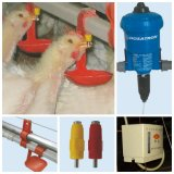 Volles Set Poultry Shed Control Equipment für Broiler