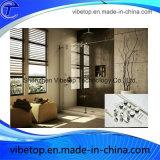 Hardware di vetro dei portelli scorrevoli della stanza da bagno dell'acciaio inossidabile