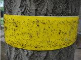 مصيدة أصفر لزجة لأنّ تحكّم الذبابات