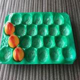Mantenha as frutas secas e limpas de plástico PP Bandeja de frutas