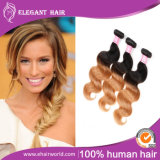 Ombre Color Human Hair Peruvian Virgin Hair Body Wave 14inches