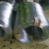 Lamiera di acciaio galvanizzata, bobina, piatto