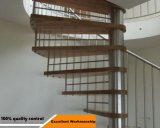 Fabrik-Verkaufs-Spirale-Treppe verwendete gewundene Treppenhäuser mit Handrailing
